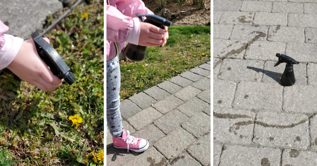 A child sprays water into the grass and path using a spray bottle
